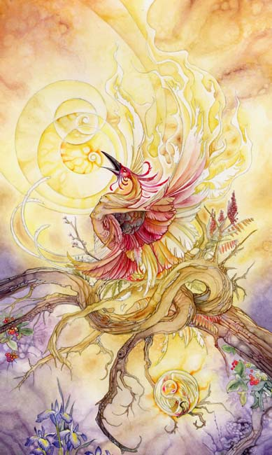 Death in Shadowscapes Tarot