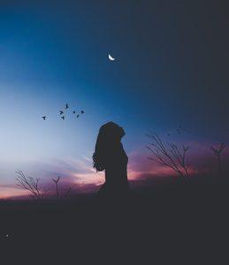 afterglow-avian-backlit-556663